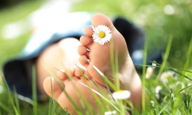 pied-fleur